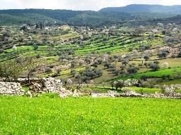 Frantoi Cutrera (Sizilien)