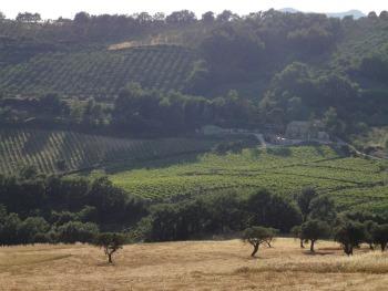 Terra di Briganti - Sannio
