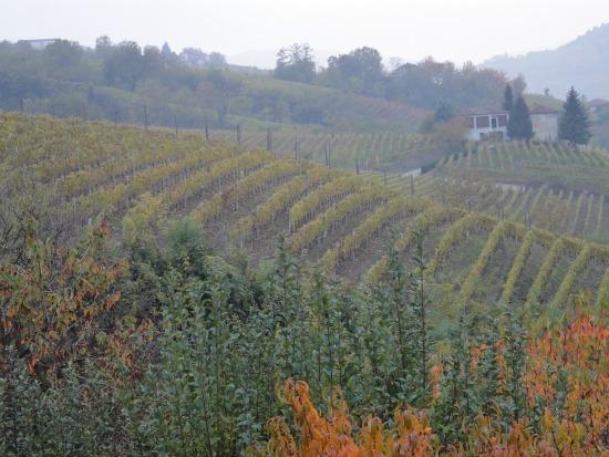Empfehlenswerte Restaurants im Piemont