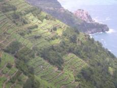 Degustationsmenü Piemont - Ligurien