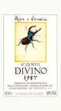 Acquavite Divino 1991 - Weinbrand  (0,50 Liter)  Pojer & Sandri